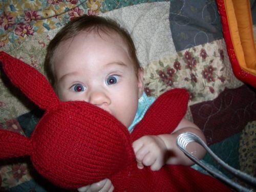 Babybunny1